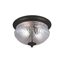 Garfield Park 2 Light 13 inch Black Outdoor Flush Mount in Fluorescent