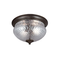 Garfield Park 2 Light 13 inch Burled Iron Outdoor Flush Mount in Fluorescent
