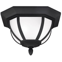 Childress 2 Light 14 inch Black Outdoor Ceiling Flush Mount in Standard