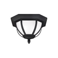 Childress 2 Light 14 inch Black Outdoor Ceiling Flush Mount in Fluorescent