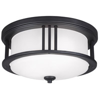 Crowell 2 Light 14 inch Black Outdoor Ceiling Flush Mount in Standard