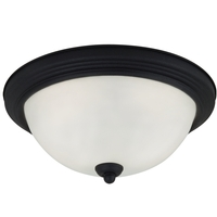 Sea Gull Oslo 2 Light Flush Mount in Blacksmith 79164BLE-839