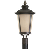 Sea Gull Lighting Cape May 1 Light Outdoor Post Lantern in Burled Iron 82240-780