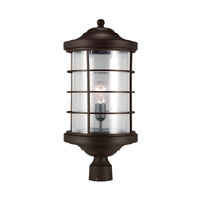 Sauganash 1 Light 22 inch Antique Bronze Post Lantern in Fluorescent