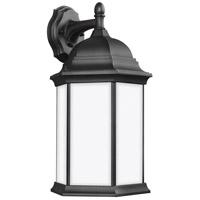 Sea Gull 8438751-12 Sevier 1 Light 19 inch Black Outdoor Wall Lantern