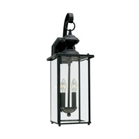 Jamestowne 2 Light 20 inch Black Outdoor Wall Lantern