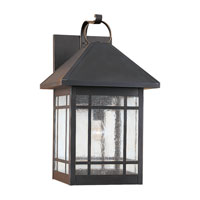 Sea Gull Lighting Largo 1 Light Outdoor Wall Lantern in Antique Bronze 85028-71