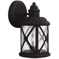 Lakeview 1 Light 10 inch Black Outdoor Wall Sconce in Clear Seeded Glass