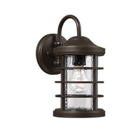 Sauganash 1 Light 12 inch Antique Bronze Wall Lantern in Fluorescent