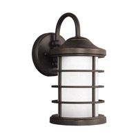 Sauganash LED 12 inch Antique Bronze Outdoor Wall Lantern in Darksky Compliant