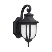 Childress 1 Light 13 inch Black Outdoor Wall Lantern in Fluorescent