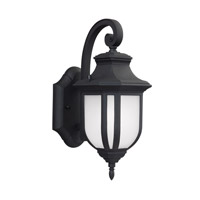 Childress 1 Light 13 inch Black Outdoor Wall Lantern