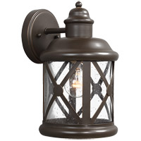 Lakeview 1 Light 12 inch Antique Bronze Outdoor Wall Sconce in Clear Seeded Glass