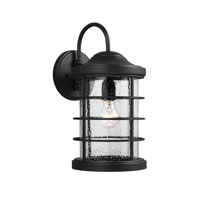 Sea Gull Sauganash 1 Light Wall Lantern in Black 8624401BLE-12