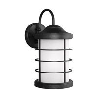 Sauganash 1 Light 17 inch Black Outdoor Wall Lantern in Standard