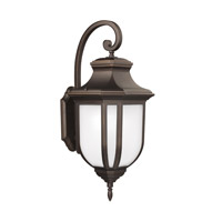 Childress 1 Light 15 inch Antique Bronze Outdoor Wall Lantern in Fluorescent