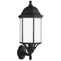 Sea Gull 8638751-12 Sevier 1 Light 22 inch Black Outdoor Wall Lantern