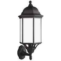 Sea Gull 8638751EN3-71 Sevier 1 Light 22 inch Antique Bronze Outdoor Wall Lantern