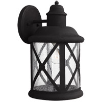 Lakeview 1 Light 14 inch Black Outdoor Wall Sconce in Clear Seeded Glass