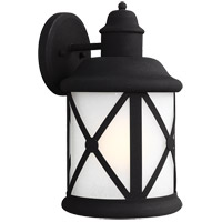 Lakeview 1 Light 14 inch Black Outdoor Wall Sconce in Etched Seeded Glass