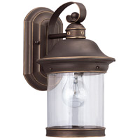 Hermitage 1 Light 14 inch Antique Bronze Outdoor Wall Lantern in Not Darksky Compliant