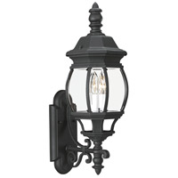 Sea Gull 88201-12 Wynfield 2 Light 24 inch Black Outdoor Wall Lantern