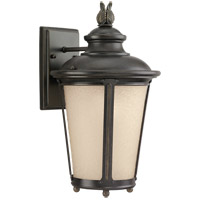 Sea Gull Lighting Cape May 1 Light Outdoor Wall Lantern in Burled Iron 88241-780