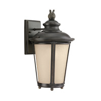 Sea Gull 88241EN3-780 Cape May 1 Light 16 inch Burled Iron Outdoor Wall Lantern