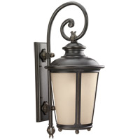 Sea Gull 88243-780 Cape May 1 Light 30 inch Burled Iron Outdoor Wall Lantern