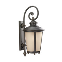 Sea Gull 88243EN3-780 Cape May 1 Light 30 inch Burled Iron Outdoor Wall Lantern