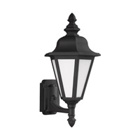 Brentwood 1 Light 20 inch Black Outdoor Wall Lantern in Fluorescent
