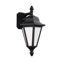 Brentwood 1 Light 18 inch Black Outdoor Wall Lantern in Fluorescent
