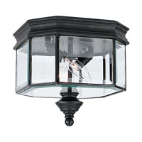 Hill Gate 2 Light 9 inch Black Outdoor Wall Lantern