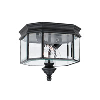 Hill Gate 2 Light 10 inch Black Flush Mount Ceiling Light