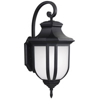 Childress 2 Light 36 inch Black Outdoor Wall Lantern in Fluorescent