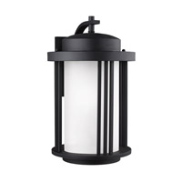 Crowell 1 Light 20 inch Black Outdoor Wall Lantern in Fluorescent