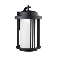 Crowell LED 20 inch Black Outdoor Wall Lantern in Darksky Compliant