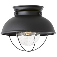 Sebring 1 Light 11 inch Black Outdoor Ceiling Lantern
