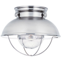 Sea Gull 8869-98 Sebring 1 Light 11 inch Brushed Stainless Outdoor Ceiling Lantern