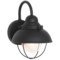 Sebring 11 inch Black Outdoor Wall Lantern