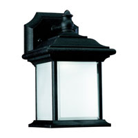 Sea Gull Lighting Wynfield 1 Light Outdoor Wall Lantern in Black 89101BLE-12