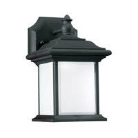 Sea Gull 89101EN3-12 Wynfield 1 Light 10 inch Black Outdoor Wall Lantern