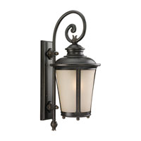 Sea Gull Lighting Cape May 1 Light Outdoor Wall Lantern in Burled Iron 89342BLE-780