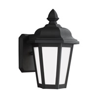 Sea Gull 89822-12 Brentwood 1 Light 10 inch Black Outdoor Wall Lantern