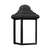 Mullberry Hill LED 9 inch Black Outdoor Wall Lantern
