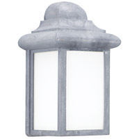 Sea Gull 8988BLE-155 Mullberry Hill 1 Light 9 inch Pewter Outdoor Wall Lantern in Pewter 155, No Photocell, Energy Efficient photo thumbnail
