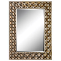Stein World 12442 Taber 43 X 32 inch Antique Gold Mirror Home Decor