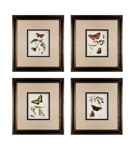 Sterling 10034-S4 Butterfly Metamorphisis Wall Art photo