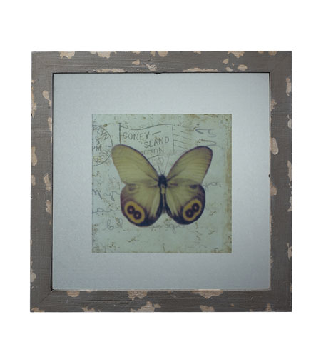 Sterling Industries Distressed Grey Picture Frame With Butterfly Print Decorative Accessory in Galloway Grey 128-1028 photo