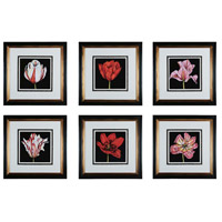 Sterling Industries Tulip Profusion Set of 6 Wall Art 10003-S6